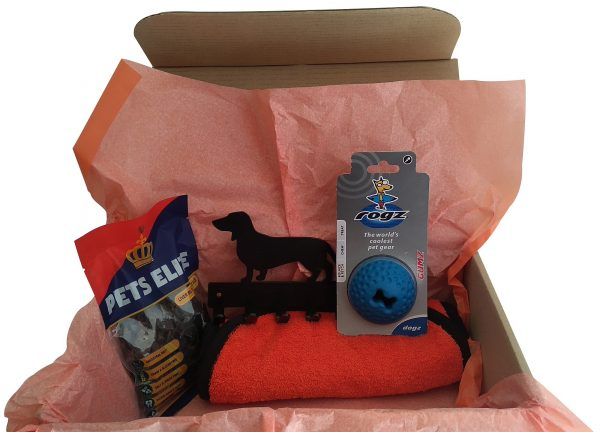 Dachshund Gift Box with 5 Hooks Leash Holder - Bundle - Buy Steel Products Online